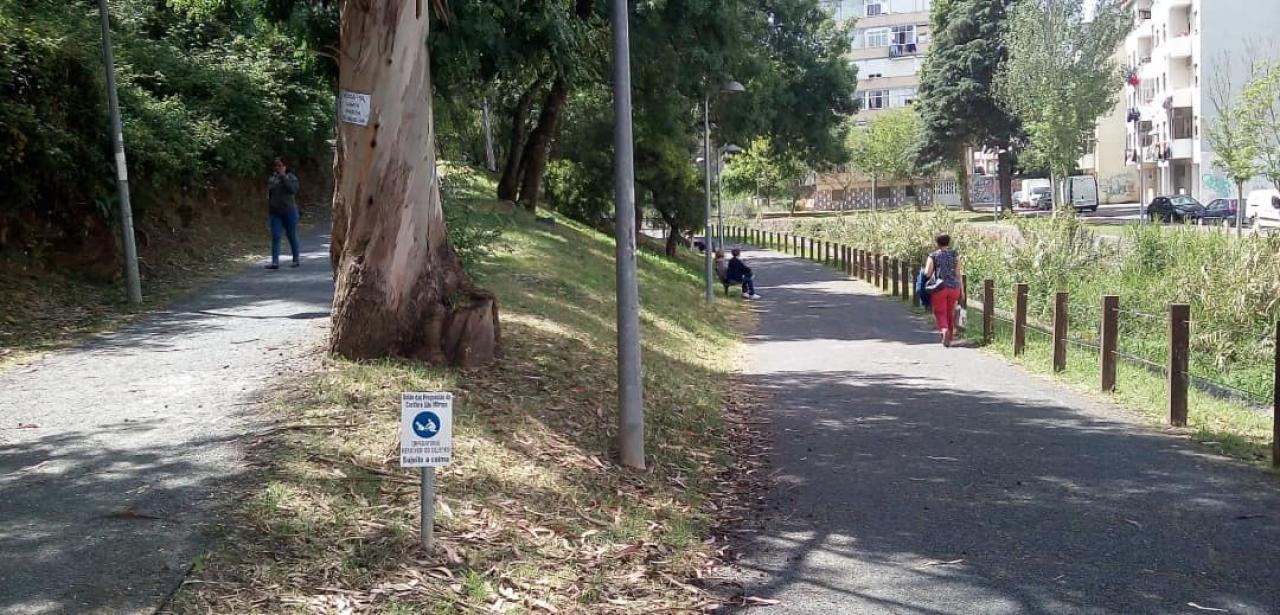 Campanha de sensibilização para a obrigação de recolha de dejetos nos espaços públicos.